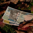 Stock Photo: Two Nairaz bills on leaf background