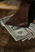 Dollar bills under sharp old axe — Stockfoto