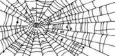 Web background CIII — Stock Vector