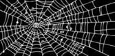 Web Rebackground — Stock Vector