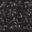 XII Constellations of Zodiac — Imagen vectorial