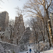Stock Photo: Central Park, New York. Beautiful park in beautiful city.