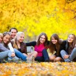 Many young girls in the autumn park - Stock Photo