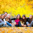 Many young girls in the autumn park — Stock Photo
