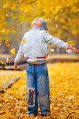 Little boy in the yellow leaves — Stock Photo