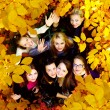 Royalty-Free Stock Photo: Many young girls in the autumn park