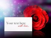 Zawiadomienie z różą — Zdjęcie stockowe