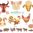 Stock Vector: Domestic animals