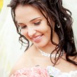 Beautiful bride — Stock Photo #4067985