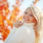 automne bois — Photo #4223001