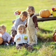 Country kids — Stockfoto #4292038
