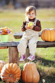 Child with pumpkins — Stok fotoğraf