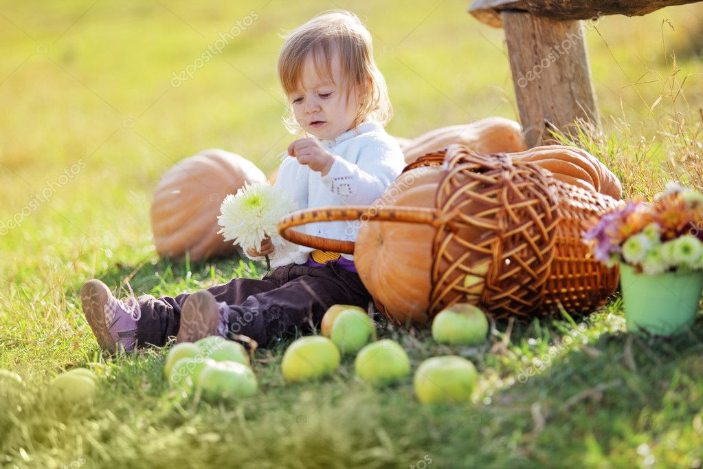 Cute child sitting on grass near pumpkins — Stock Photo #4292046