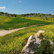 Mediterranean hills landscape in spring — Stock Photo