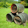 Wine Barrels — Stock Photo #4162908