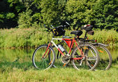 Bicycles parked near the lake — Stock Photo