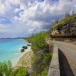 Bonaire coastline - Stock Photo