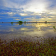 Bonaire lake — Stock Photo