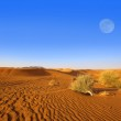 Dubai sand dunes — Stock Photo #5015536