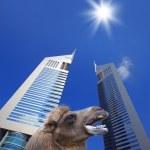United Arab Emirates — Stock Photo #5030921