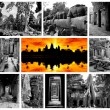 Stock Photo: Angkor Archaeological Park