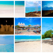 Stock Photo: Collection of nature pictures from Caribbeisland Aruba