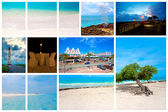 Collection of nature pictures from the Caribbean island Aruba — Stock Photo