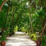Meeru Island — Stock Photo #5374783