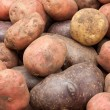 Potatoes — Stock Photo #3925527