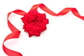 Red rose with red ribbon — Stock Photo