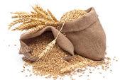 Worki ziarna pszenicy — Zdjęcie stockowe