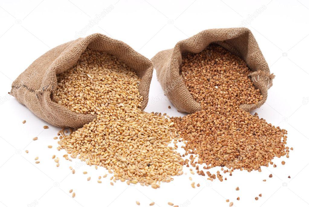 Burlap sack with wheat grain and buckwheat stock photo