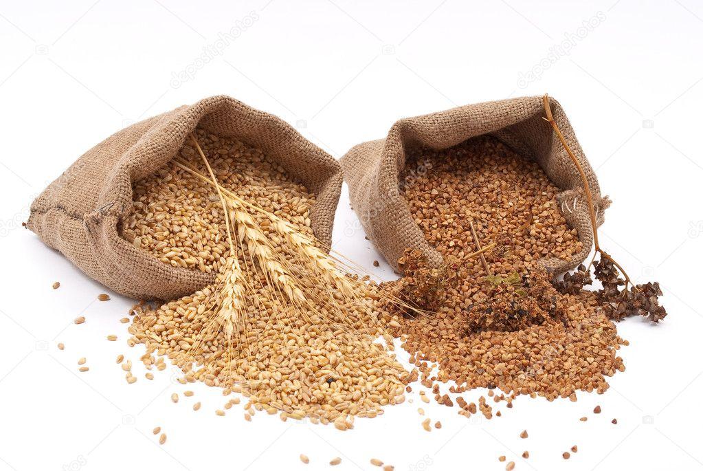 Burlap sack with wheat grain and buckwheat — Stock Photo ...