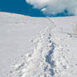 snow mountain.winter panorama.traces — Stock Photo