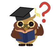 Clever owl with book — Stock Vector
