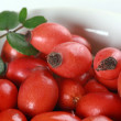 Stock Photo: Rose hips