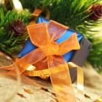 Christmas gift box — Stock Photo #4334465