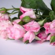 Shabby Chic Roses — Stock Photo #5152815