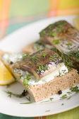 与鲱鱼三明治 — 图库照片