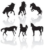 Vector horse silhouettes — Stock Photo