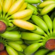 Bananas — Stockfoto #4776805
