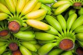 Plátanos — Foto de Stock