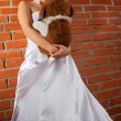 Beauty bride — Stock Photo