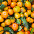 Tangerine — Stock Photo #5216048