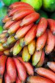 Banana fruits — Stock Photo