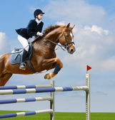 Equestrian jumper — Stock Photo
