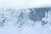 Wonderful frost — Stock Photo