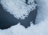 Spring snow closeup — Stock Photo
