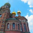 Church of Savior on Spilled Blood — Stock Photo #5174680