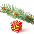 New Year's gift under the fir trees — Stock Photo